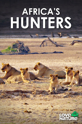 Africa's Hunters - Season 3