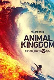 Watch Movie Animal Kingdom - Season 4