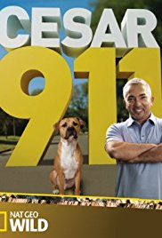 Watch Movie Cesar 911 season 1