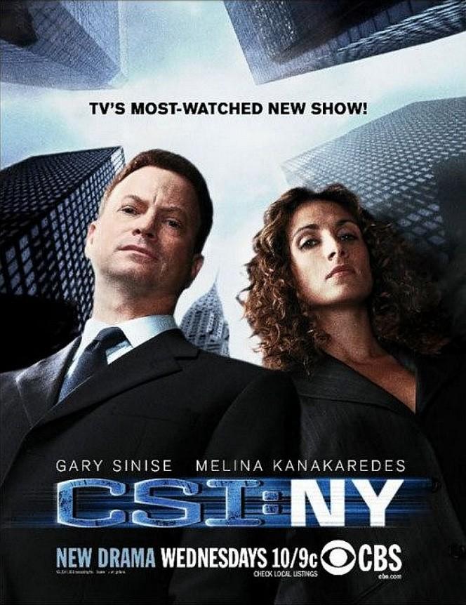 Watch Movie CSI: NY - Season 4