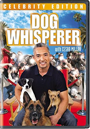 Watch Movie Dog Whisperer with Cesar Millan - Season 1