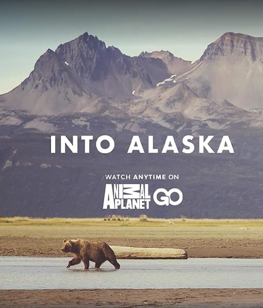 Watch Movie Into Alaska - Season 1