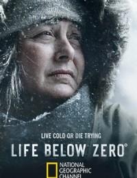 Watch Movie Life Below Zero - Season 11