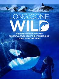 Watch Movie  Long Gone Wild