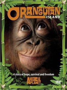 Watch Movie Orangutan Island - Season 1