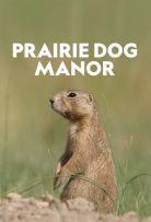 Watch Movie Prairie Dog Manor - Season 1