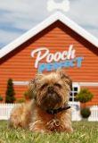 Watch Movie Rebel Wilson's Pooch Perfect - Season 1