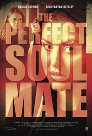 Watch Movie The Perfect Soulmate