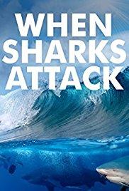 Watch Movie When Sharks Attack - Season 5